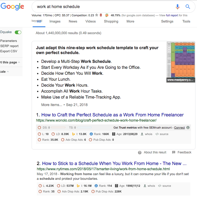 Screenshot of Google Search results for work at home schedule