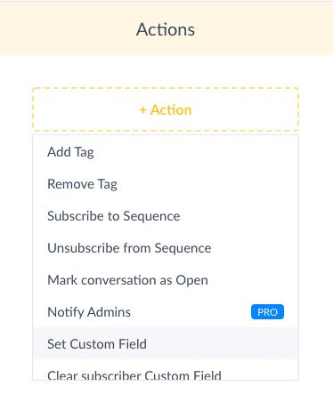ManyChat Screenshot Set Custom Field