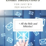 Flodesk: the only email marketing service you will ever need blog title overlay
